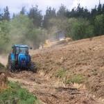 Preparación del terreno para plantación